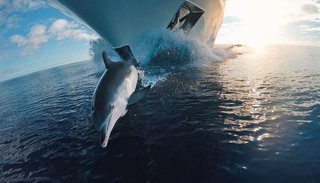 the best gopro photos in the world prepare to lose your breath image 136