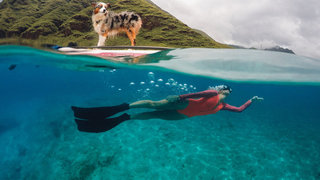the best gopro photos in the world prepare to lose your breath image 18