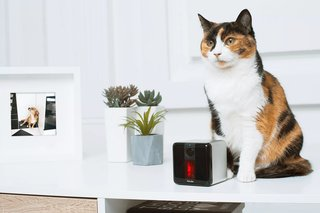 15 incredible high tech gadgets for your pets and yourself image 6