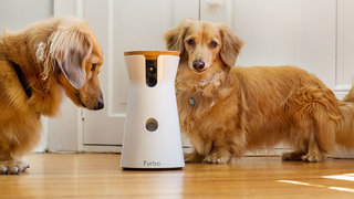 15 incredible high tech gadgets for your pets and yourself image 8