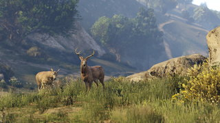 grand theft auto 5 review image 6