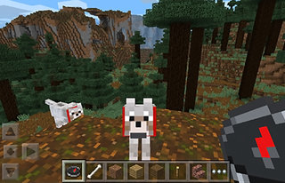Microsoft-owned Minecraft finally comes to Windows Phone