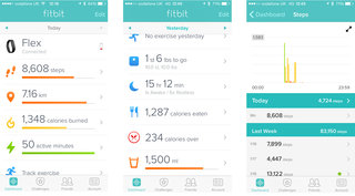 fitbit flex review image 29
