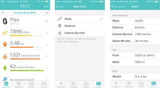 fitbit flex review image 31