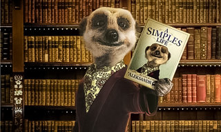 Orange Wednesdays are back... sort of: Meerkat Movies revives the 2 for 1 offer