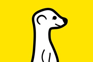 Meerkat live-streaming app arrives on Android, while Periscope is still iOS-only