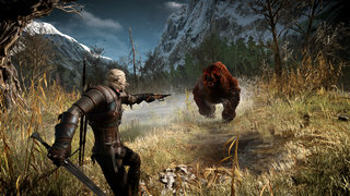 the witcher 3 wild hunt review image 6