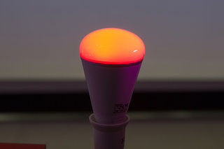 playbulb wants to bring hue like skills to your garden image 3