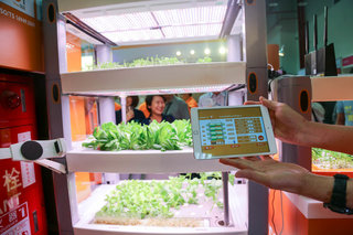 Play FarmVille for real with your very own iPad controlled garden