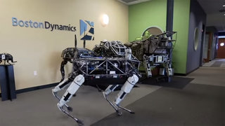 48 real life robots that will make you think the future is now image 5