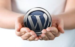 Pay what you want for 12 essential WordPress courses