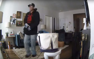 Caught by Canary: Burglars, cats and funny moments caught on the smart security camera