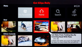 10 best comedy streaming services funny cat clips dangerous stunts stand up and more image 5