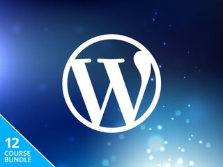 Build the perfect website with the WordPress Wizard Bundle