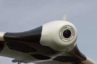 parrot disco preview image 11