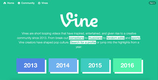 what is vine camera and what can it do  image 2