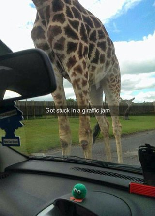 33 of the best snapchat fails and comedy snaps around image 26