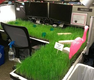 21 of the best office tech pranks of all time image 16