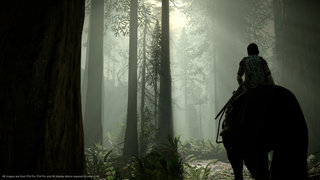 Shadow of the Colossus PS4 image 7