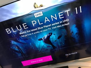 Blue Planet II now available in 4K HDR on BBC iPlayer for free, here's how to watch it