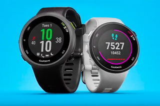 Which Garmin Fitness Tracker Or Watch Should I Buy Fenix Forerunner And Vivo Compared image 19