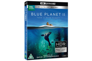 Now You Can Watch Blue Planet Ii In 4k Hdr Even Without A Hlg Tv image 2