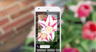 Google Lens comes to more Android devices and even iOS users