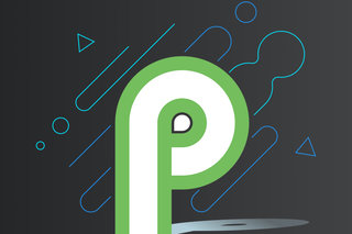 Image result for ANDROID P official logo