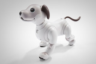 Want to a robot dog? Sony will sell its Aibo dog this autumn