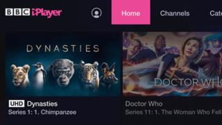 Bbc Dynasties Is Latest Series In 4k Hdr On Iplayer image 2