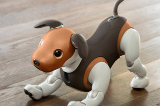 OMG! We want Sony's new beagle-like Aibo robot dog