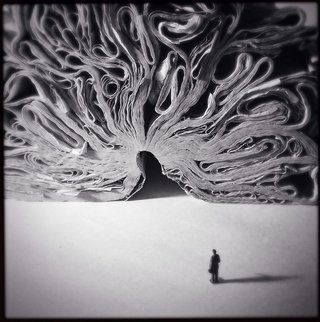 The Best Apple Iphone Photos Ever Taken image 13