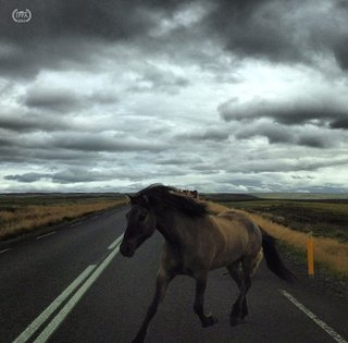 The Best Apple Iphone Photos Ever Taken image 16