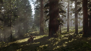 Red Dead Redemption 2 screens image 5