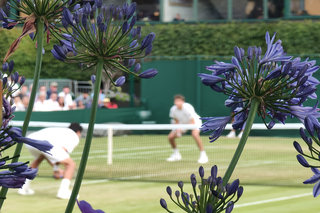 How Wimbledons official photographer used Oppos 10x zoom tech to capture The Championships image 6
