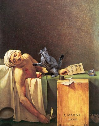 Amusing Images Of Animals Photoshopped Into Renaissance Paintings image 10