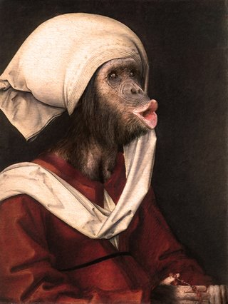 Amusing Images Of Animals Photoshopped Into Renaissance Paintings image 6
