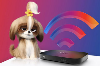 Sky promises strong Wi-Fi in every room or your money back