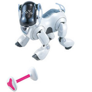 Aibo - Robotic Dog