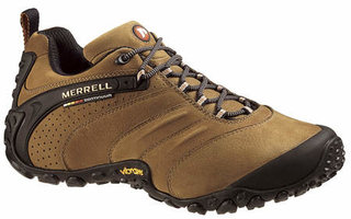 Merrell Chameleon II Leather walking shoes