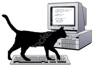 Protect your PC not against the latest virus, but your cat