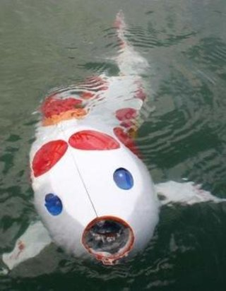 Robotic fish goes on show in Japan