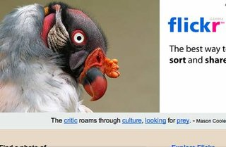 WEBSITE OF THE DAY - flickr.com