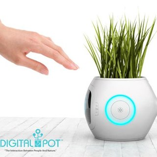 Pot that tells you what your plant needs