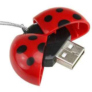 "USB ""ladybug"" card reader launches"
