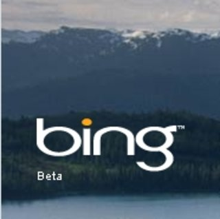 Bing Travel under fire for Kayak copy