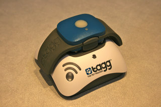 tagg the pet tracker collar keeps your pets smart image 3