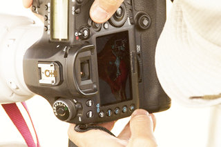 canon eos 5d mk iii spied on safari  image 2