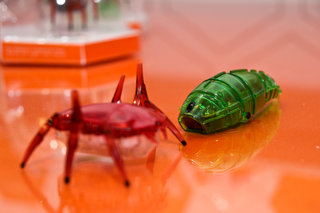 new hexbugs coming to expand creepy crawly robot range including zombies pictures  image 19