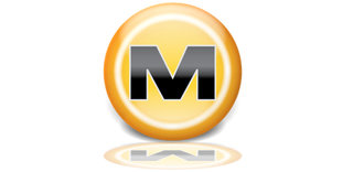 megaupload user data could be deleted in days image 1